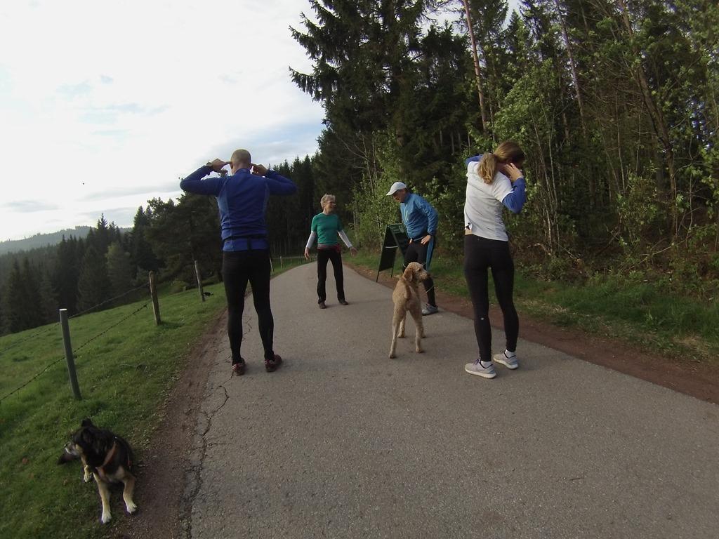 DACH ChiRunning Instructor Treffen im Schwarzwald